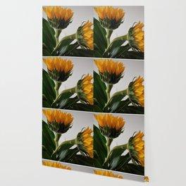 Sunflowers Wallpaper