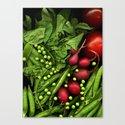Summer Salad by farmtoscanner