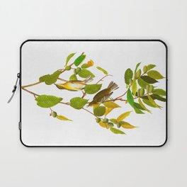 Autumnal Warbler James Audubon Vintage Scientific Illustration American Birds Laptop Sleeve