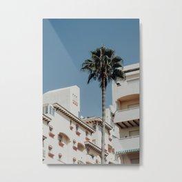 Estepona Palm Tree Metal Print
