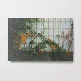 Orange life Metal Print