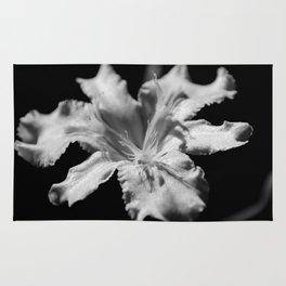 Iris Black and White Rug