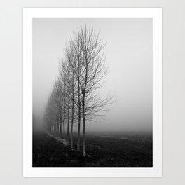 Tree line and fog Art Print
