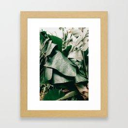 Banana Leaves Framed Art Print