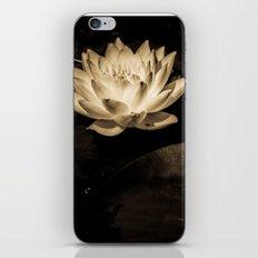 Netherworld Nymphaea iPhone & iPod Skin