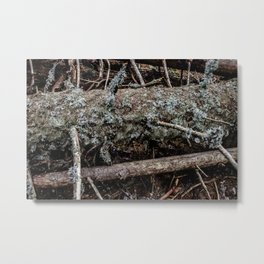 Forest Detail Metal Print