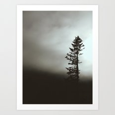Foggy Tree Art Print