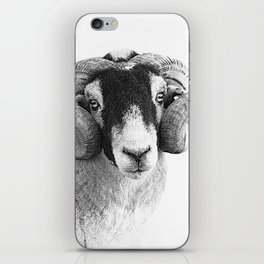 Black and which moorland sheep iPhone Skin