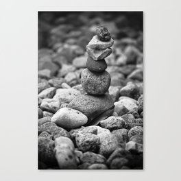 feather and stone Canvas Print