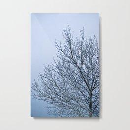 Frozen Nature Metal Print