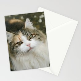 Minou Stationery Cards