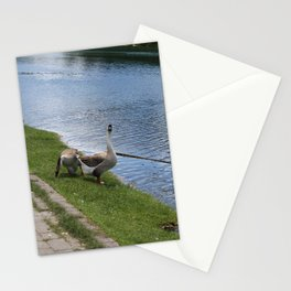 big birds Stationery Cards