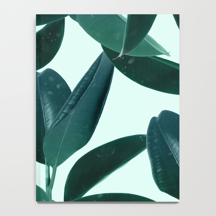 Plant Dynamics Notebook