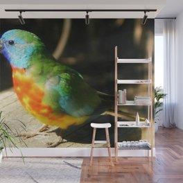 Scarlet-chested Parrot ( splendida ) Wall Mural