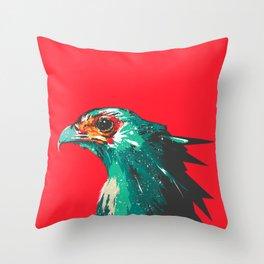 FLY concept Throw Pillow