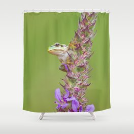 The little green frog Shower Curtain