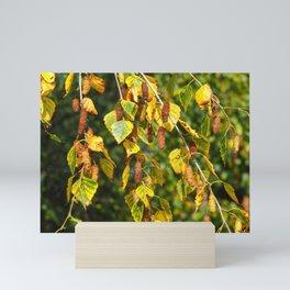 Autumn Leaves and Catkins Mini Art Print