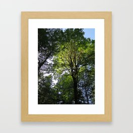 Sunny at the Pointe 48 Framed Art Print