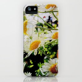Cracks in the idyll iPhone Case