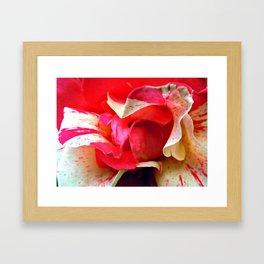 pink swirl Framed Art Print