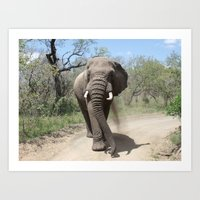 Elephants of Africa Art Print