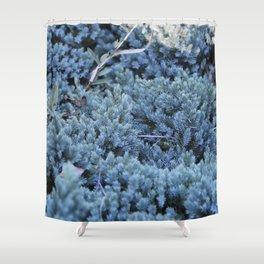 iceblue fractal Shower Curtain