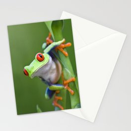 Red-eyed Tree Frog Stationery Cards