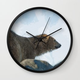 Polar Wall Clock