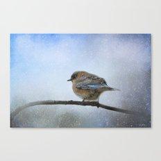 Bluebird In The Snow Canvas Print