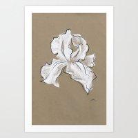 iris Art Prints featuring Iris  by Mich Li