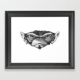 Mr. Monkey Robert Framed Art Print