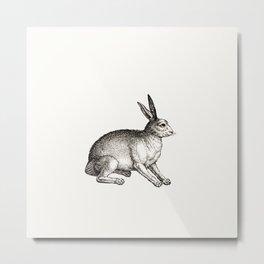 Rabbit Illustration Minimal Decor Black White Metal Print
