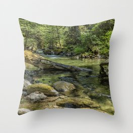 French Pete Trail Throw Pillow