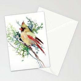 Cardinal Bird Artwork, female cardinal bird Stationery Cards