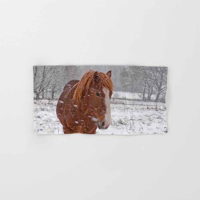 Horse in the snow Hand & Bath Towel