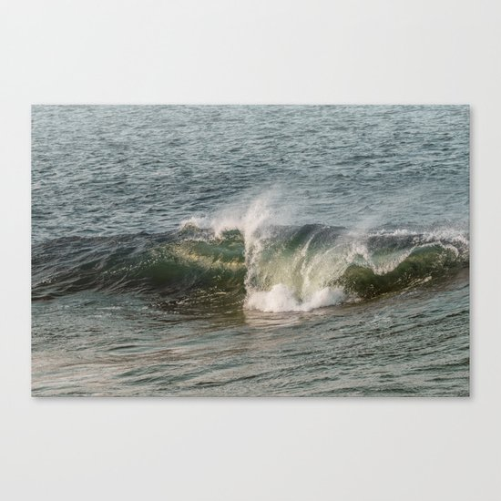Wave at Bearskinneck Canvas Print