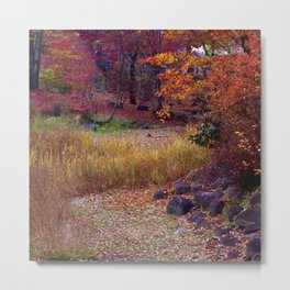 Fall Foliage in Nikko, Japan Metal Print