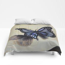 Le papillon sur les traces de l'amour Comforters