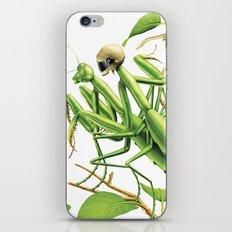 Safe sex for mantis iPhone & iPod Skin