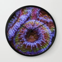 Coral Acanthastrea Lordhowensis Rainbow Wall Clock