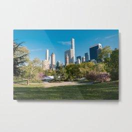 Central Park Manhattan New York City Metal Print