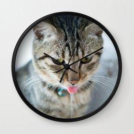 Drooling Cat Wall Clock