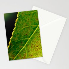 Leafy Details Stationery Cards