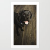 lab Art Prints featuring Black Lab by Every Dog Has a Story