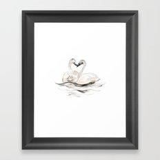 Swan Siblings Framed Art Print