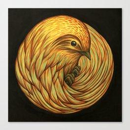 Bird Spiral Canvas Print