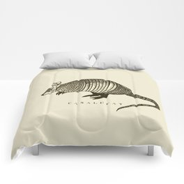 Armadillo power Comforters