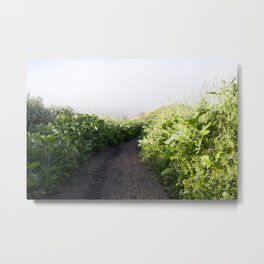 Follow The Trail Metal Print