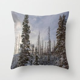 Today's Best Throw Pillow