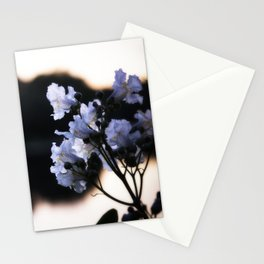 Summertime Flowers - Melrose, MA 2019 Stationery Cards
